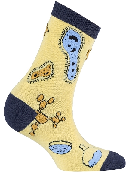 Women's Science Crew Socks #4044